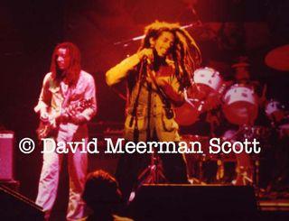 1 Bob Marley by DMScott