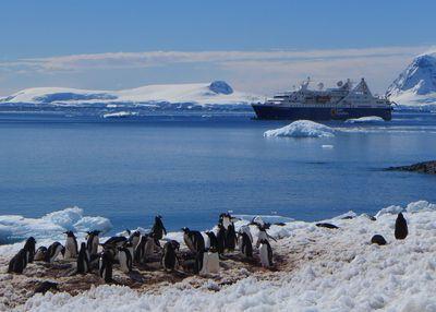 Antarctica gig photo