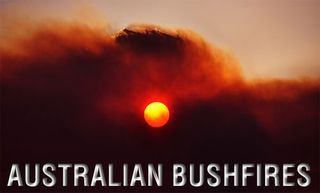 Bushfires500