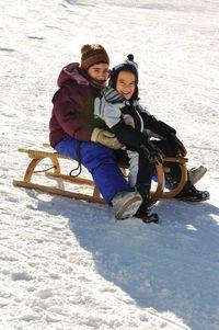 Shutterstock_sledding