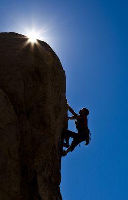 Shutterstock_courage