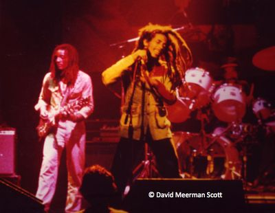 Marley by DMScott